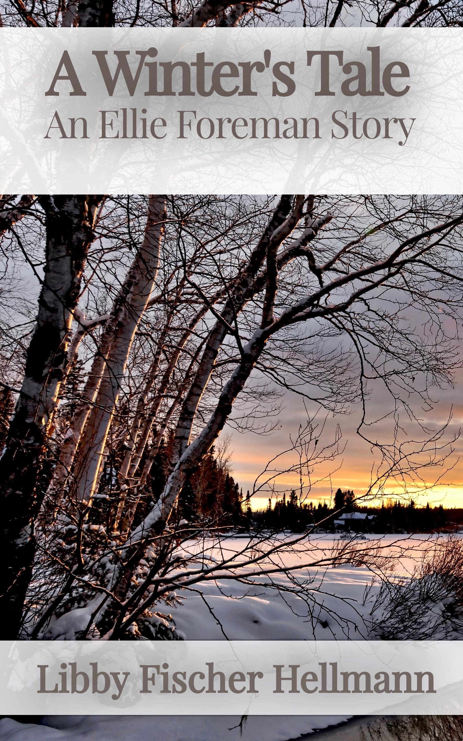 A Winter's Tale by Libby Fischer Hellmann